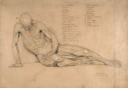 Smugglerius sketched by William Linnell 1840